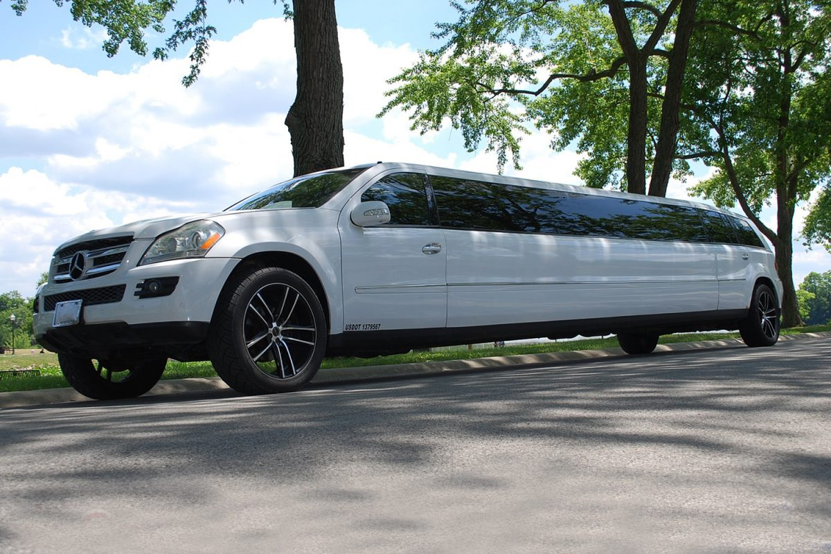 second nature limousine